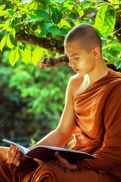 Buddhist Monk Studying