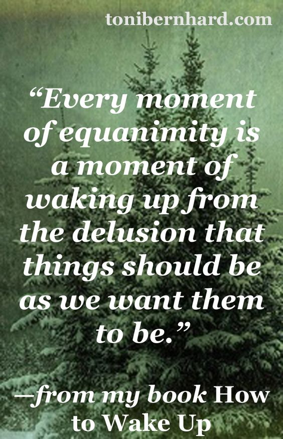 quotes on equanimity