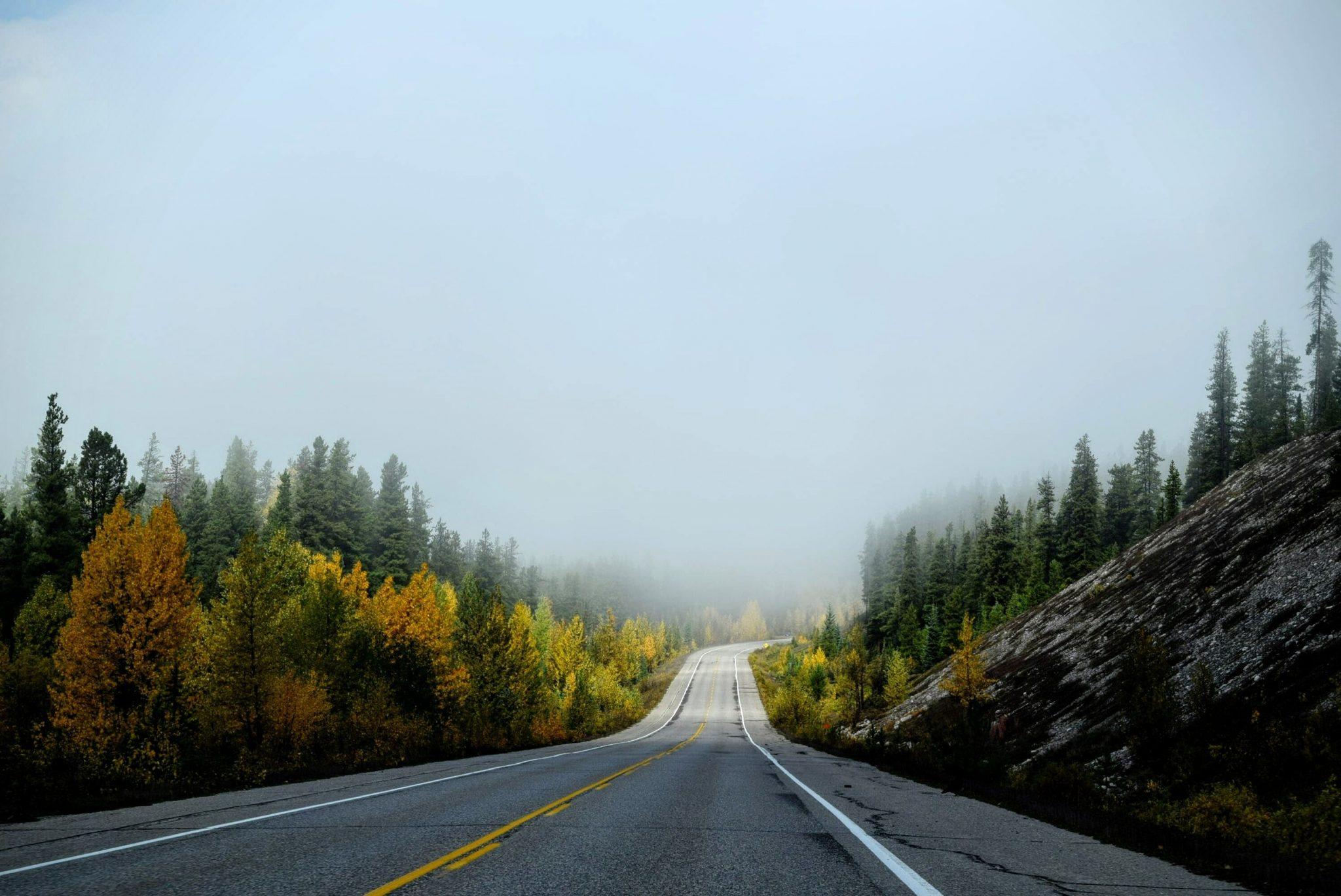 driving meditation