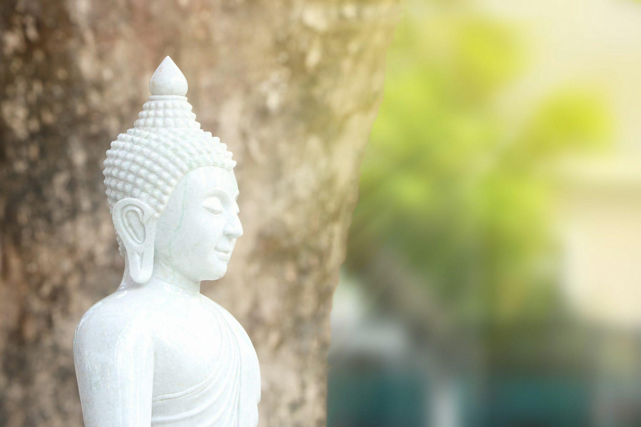 Buddhist symbols the lotus wheel and more one mind dharma share2k biocorpaavc Gallery