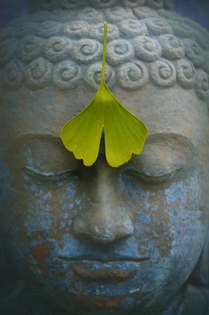 the life of siddhartha gautama